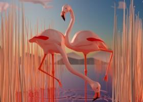 flamingo10